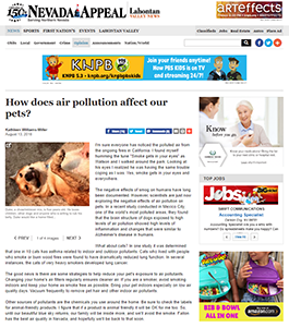 How does air pollution affect our pets?